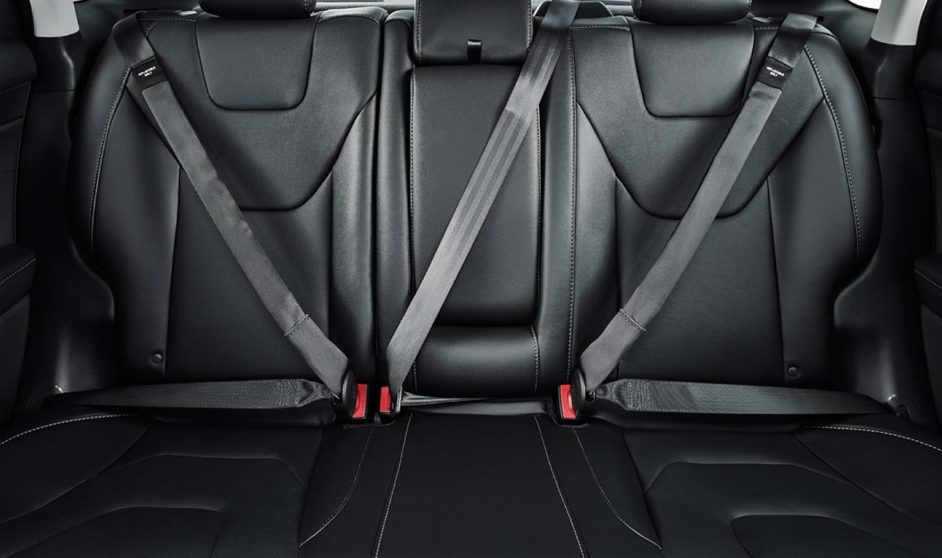 Fusion Titanium Backseat